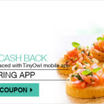 TinyOwl 100% Cashback on Online Food Order
