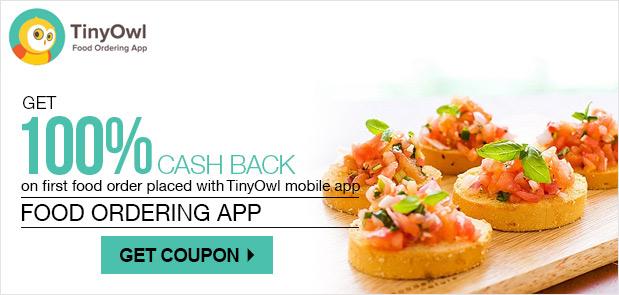 TinyOwl 100 cashback
