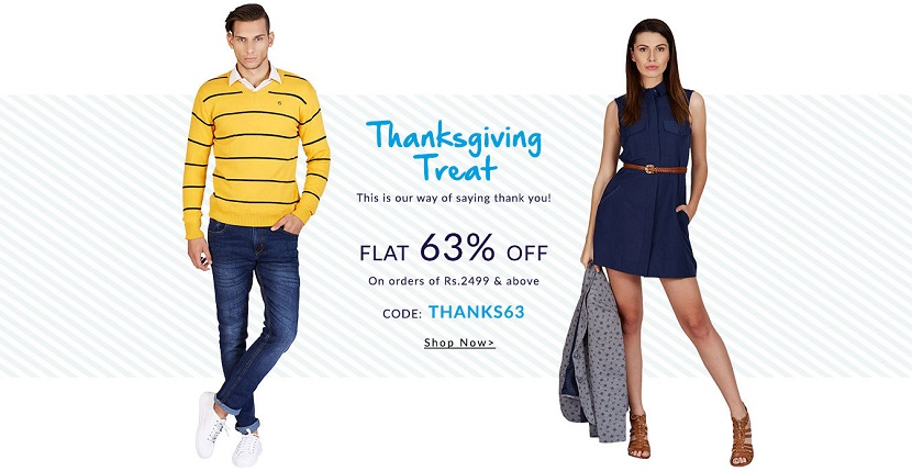 American Swan Thanksgiving Sale